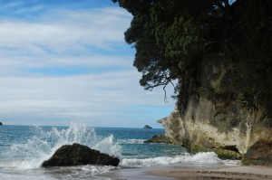 Cathedral Cove 07
