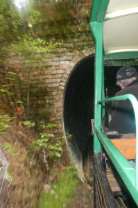 Driving creek railway 05